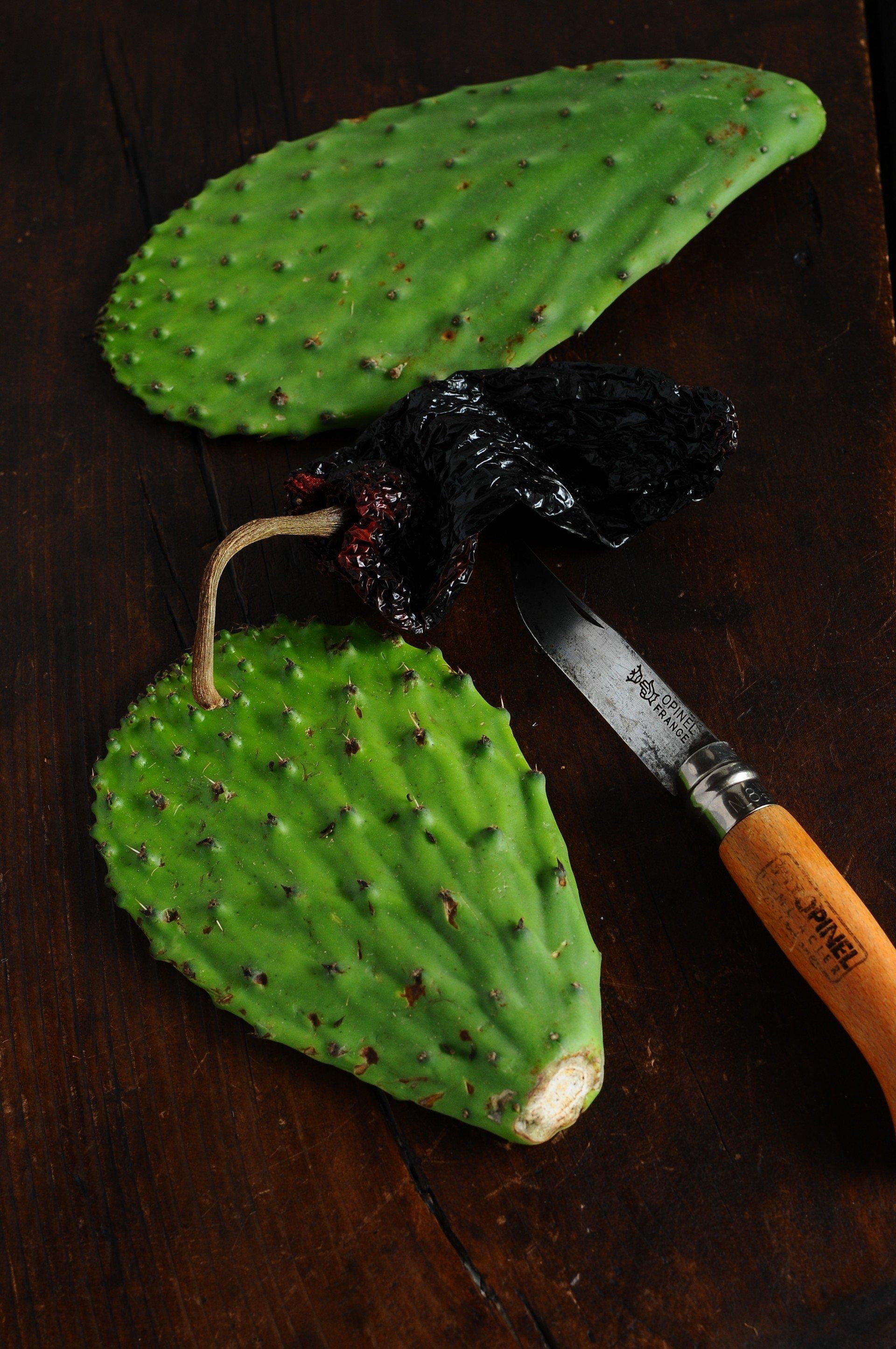 Nopales cactus salad