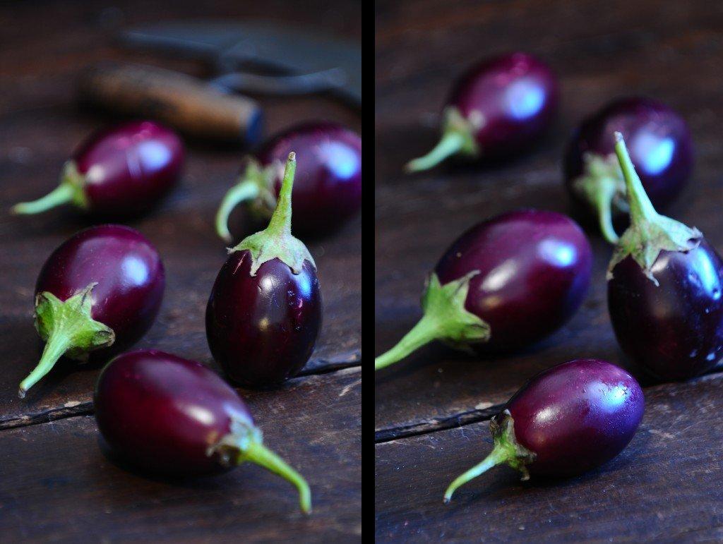 SSP_Eggplant