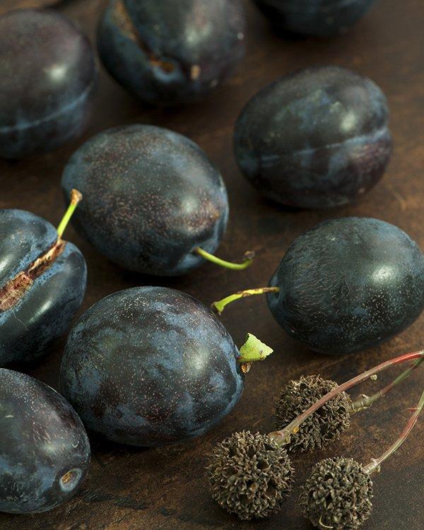 swiss plum tart